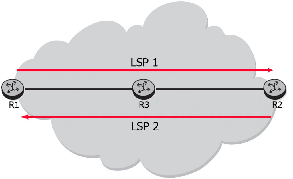 mpls component1